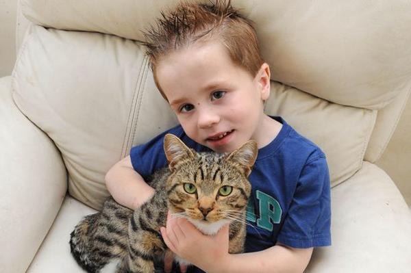 Как кот спас мальчика