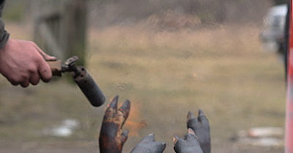 Газовая горелка для опалки туш свиней своими
