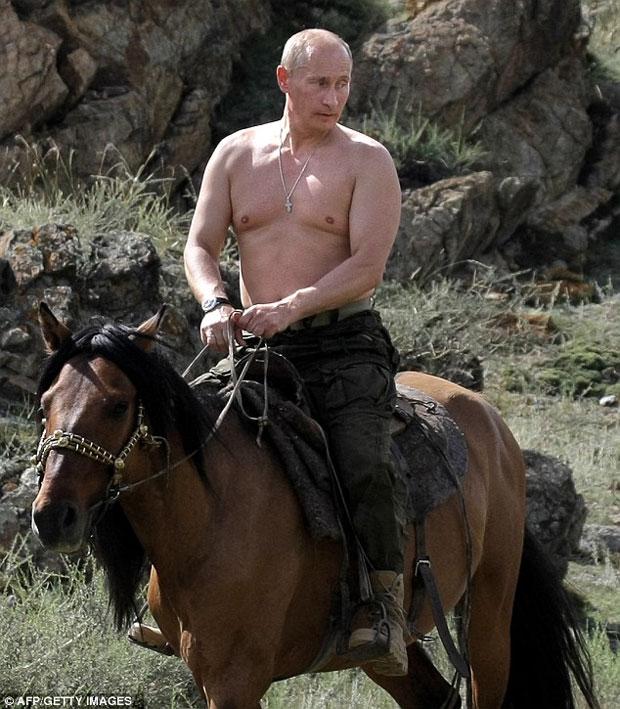 "Картинки по запросу ""Путин на лошади голый"""